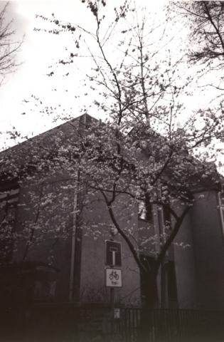 LOMO - Frühling
