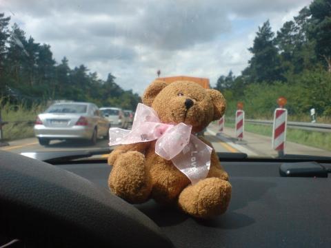 Teddy im Stau