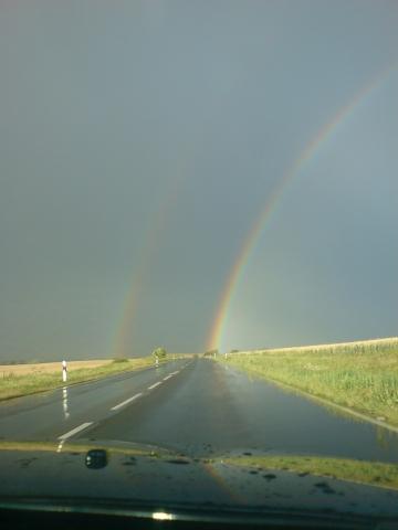 regenbogenI